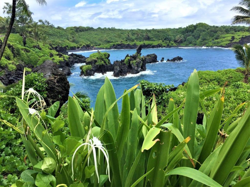 Road to Hana Hawaiian Islands