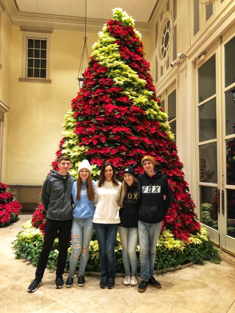 Christmas Tree Nashville Tennessee