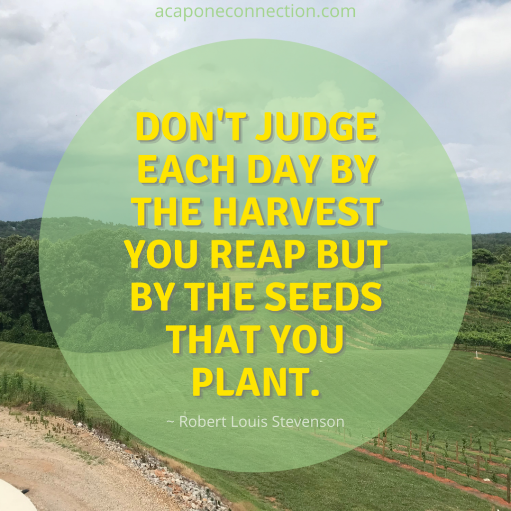 Inspirational Quotes reap what you sow