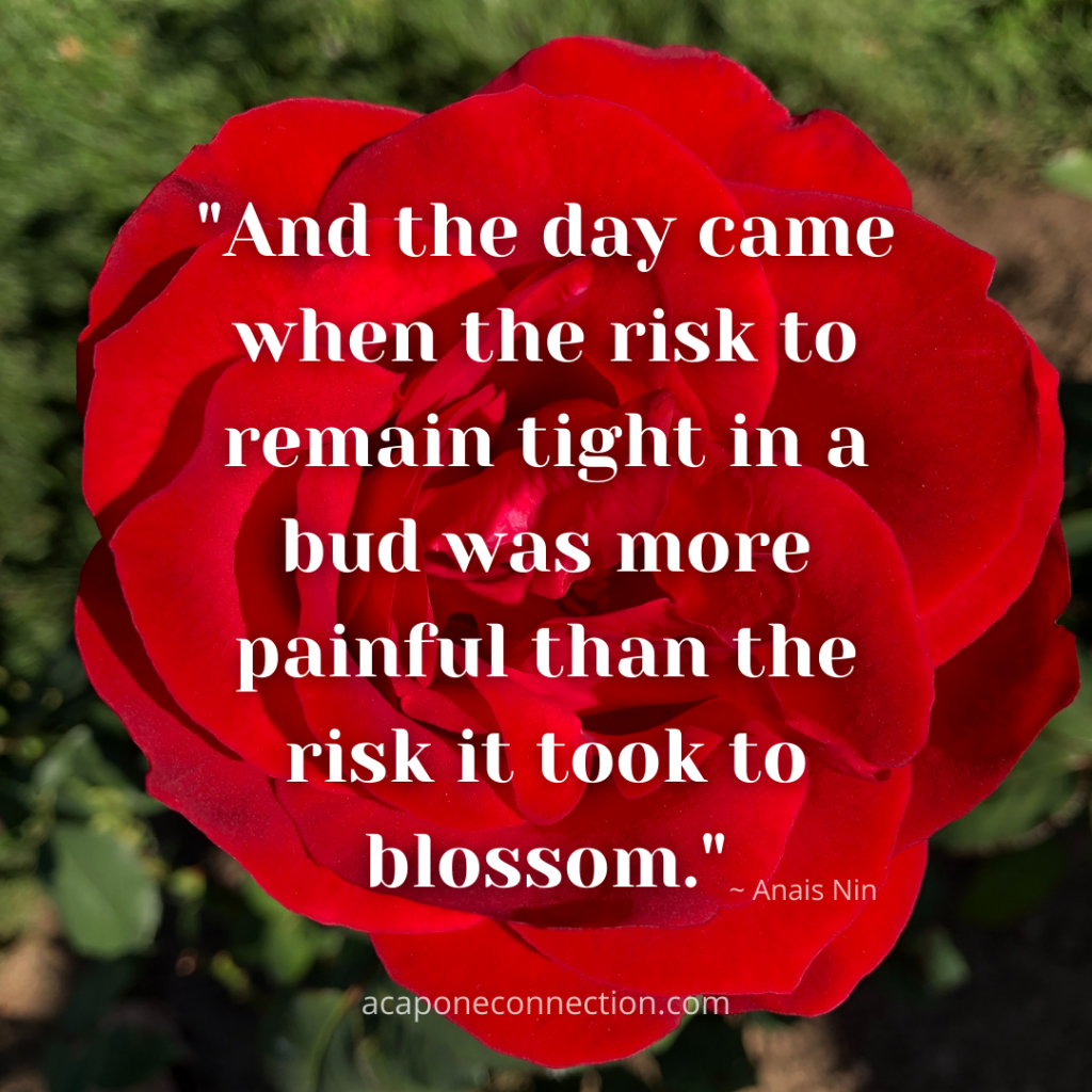 Inspirational Quote about Risk